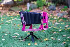"Chroma ""Bubblegum"" Edition (Steve Lloyd) Tags: chroma large format pink custom camera"
