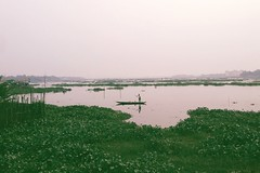 Gazipur | 2018 (Mridul Bangladeshi) Tags: followback following follow mobilephotography fisher fishing fish boat river green beauty beautiful natural filmisgood ishootfilm filmphoto travelphotography traveldiaries travel gazipur dhaka photographer photography naturephotography nature film iphoneclick iphone vscox vsco asia bangladesh