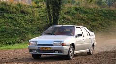 Citroën BX Sport (Skylark92) Tags: nederland netherlands holland zuidlimburg bxclub najaarsrit 2018 tour rit ride route car road grass sky animal tree forest citroën bx sport 63xkjt 1985