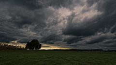 _8250684 (omj11) Tags: paysages olympus orage ciel nuages 169 leica