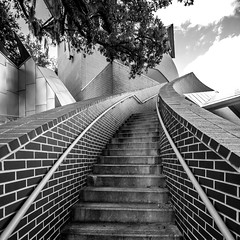 The Righteous Path (Thomas Hawk) Tags: america biloxi frankgehry gehry harrisoncounty mississippi museum ohrokeefemuseumofart usa unitedstates unitedstatesofamerica architecture bw fav10 fav25 fav50