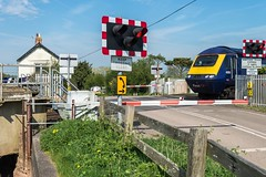 Return to Athelney (Nodding Pig) Tags: athelney levelcrossing railway train somerset england greatbritain uk 2018 somersetlevels class43 dieselelectric locomotive mtu 43155 hst highspeedtrain intercity125 201804219682101 langportcastlecaryline