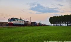 E652 154 (MattiaDeambrogio) Tags: e652 154 tigre mercitalia rail trenitalia cargo merci treno container intermodale borgolavezzaro mortara terminal