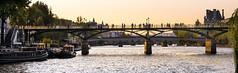 Puente de las Artes (Francisco Esteve Herrero) Tags: francia franciscoesteveherrero pacoesteveherrero puentedelasartes nikond5300 sigma1750 2018 france rio sena riosena gente contraluz atardecer