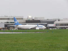 Photo of EC-MVY on stand.