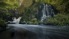 Linn Jaw waterfalls, Livingston, Scotland. (iancook95) Tags: jaw linn