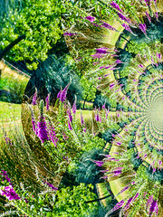 A New Dawn Breaks Differently (Steve Taylor (Photography)) Tags: foxglove park digitalart green mauve purple newzealand nz southisland christchurch canterbury grass trees curve distorted