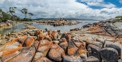 _D757065.jpg (David Hamments) Tags: panorama tasmania bayoffires northeastcoast binalongbay fantasticnature ngc