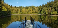 Bergrat Müller-Teich (1elf12) Tags: harz friedrichsbrunn germany deutschland teich lake bergratmüller