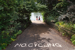 No Cycling (pni) Tags: text written pavement nocycling sign bush fence leaf animal bird pigeon homunculi human people person being woman hydepark uk18 london uk england unitedkingdom pekkanikrus skrubu pni imageediting composite collage photomontage