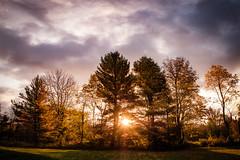 It's Autumn (Nicholas Erwin) Tags: sunrise morning goldenhour landscape nature naturephotography natural trees clouds sky autumn fall foliage dawn sun contrast fujifilmxt2 fujixt2 fujifilm fuji xf1855mmf284rlmois xf1855 fujifilm1855 waterbury waterburycenter vermont vt unitedstatesofamerica usa america fav10 fav25 fav50