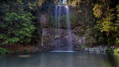 Millaa Millaa Falls (RoosterMan64) Tags: athertontablelands australia landscape longexposure millaamilla millaamillaafalls queensland tropicalnorthqueensland water waterflow waterfall