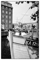 Agfaphoto APX100 @ISO 320 dev. in 510-Pyro (Ruediger Hartung) Tags: apx100 apx agfaphoto minox 510pyro pyro