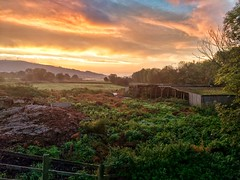 Nicer than usual (tubblesnap) Tags: motorola silsden steeton sunrise morning early snapseed yorkshire scenery landscape commute aire valley airedale