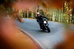 Honda CB600F Hornet (3) (Marcel Svět) Tags: october canon eos 760d motorbike motorcycle honda hornet color