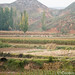 Lanzho / Xiahe agriculture