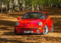 Porsche 911 3.2 Carrera Sport at Clumber Park - 25/10/2018 (kevaruka) Tags: porsche porsche911 porscheclubgb 911 32 carrera 1984 1983 clumberpark nottinghamshire nationaltrust autumn 2018 october kevinfrost 25102018 car classiccar aircooled colour colours color colors sun sunshine sunnyday shadows guardsred red orange green canon canoneos5dmk3 canon5dmk3 canon70200f28ismk2 5d3 5diii 5d 5dmk3 composition flickr thephotographyblog frontpage fuchs gmodel impactbumper