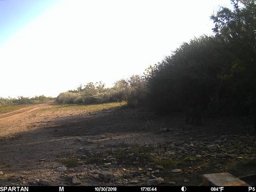 2018-10-30 17:10:44 - Crystal Creek 2