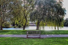 Take a seat!😀 (LeanneHall3 :-)) Tags: groupenuagesetciel bench tree willowtree treetrunk brown green leaves branches lake sky sunshine eastpark hull kingstonuponhull landscape canon 1300d