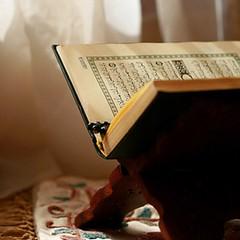 بِسْمِ اللهِ الرَّحْمٰنِ الرَّحِيْم يٰسۤۚ ﴿۱﴾ وَالۡقُرۡاٰنِ الۡحَكِيۡمِ ۙ ﴿۲﴾ اِنَّكَ لَمِنَ الۡمُرۡسَلِيۡنَۙ ﴿۳﴾ عَلٰى صِرَاطٍ مُّسۡتَقِيۡمٍؕ #SurahYaaheen #Quran #Pak #HolyQuran #Janamaz #Tasbih #Islam #JummahMubarak #Friday #Life #Love o (Gillaniez) Tags: surahyaaheen quran pak holyquran janamaz tasbih islam jummahmubarak friday life love
