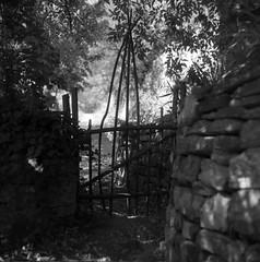 Naves private gate (salparadise666) Tags: mamiya c330 sekor 80mm orange filter fomapan 10064 caffenol rs 15min nils volkmer vintage medium format square 6x6 film analogue camera bw black white monochrome france cevennes naves village ardeche region countryside view