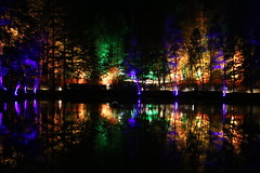 2018 - 4.10.18 Enchanted Forest (90) (marie137) Tags: forest lights trees show marie137 bright colourful pitlochry treeman attraction visit entertainment music outdoors sculptures wicker food drink family people water animation