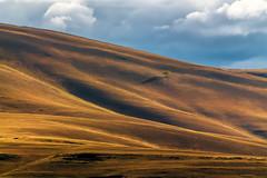 Разный Урал #своифото, #пейзаж, #природа, #утро, #рассвет, #дерево, #натура, #восход, #sunrise, #nature, #tree, #Landscape, #sun, #туман, #лучи, #foggy, #природа, #небо, #небоголубое, #сониальфа, #сониа6000, #sonyalpha, #sonya6000, #natgeoru, #natgeorussi (ЛеонидМаксименко) Tags: сониа6000 natgeoru foggy nature небо природа натура дерево etonashural sun рассвет своифото sunrise natgeorussia сониальфа пейзаж восход sonyalpha небоголубое утро sonya6000 лучи tree landscape natgeoyourshot туман