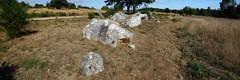 L'alignement de menhirs de Forgerais à Saint-Just - Ille-et-Vilaine - Septembre 2018 - 04 (Erwan Corre) Tags: mégalithe menhir illeetvilaine bretagne france quartzite quartz saintjust stjust cojoux landesdecojoux forgerais alignement