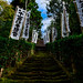 Mossy stone steps of Sugimoto-dera Temple : 杉本寺の石段(鎌倉市二階堂)