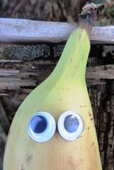 banana look (hussi48) Tags: banana look augen banane macromondays bfood