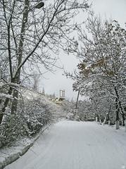 13732159 (aniaerm) Tags: snow ice frost