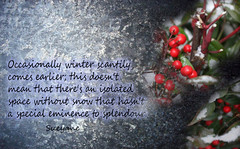 Occasionally winter (Sueyane) Tags: thought winter splendour gardenplant garden words frost freeze berries bokeh fruit nature
