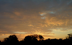 Dawn at Donaldson Park (Dendroica cerulea) Tags: sunrise morning dawn sky clouds skyline trees autumn donaldsonpark highlandpark middlesexcounty nj newjersey