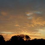 Dawn at Donaldson Park thumbnail