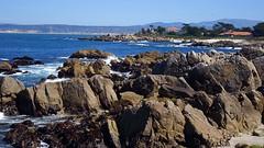 ~Monterey~ (~☮Rigs Rocks☮~) Tags: rigsrocks centralcoast spring pacificocean 17miledrive loverspointpark pacificgrove monterey