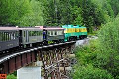 White Pass & Yukon Route Railroad (Infinity & Beyond Photography: Kev Cook) Tags: whitepassyukonrailroad railroad railway train locomotives trees landscapes scenery skagway alaska photos bridge