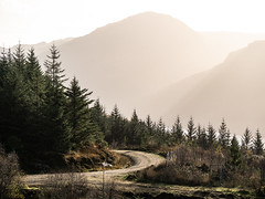 In the Distance - Loch Eck Nov 2018 (GOR44Photographic@Gmail.com) Tags: hill clachbheinn loch eck argyll cowal scotland sunlight trees path loop mountains gor44 panasonic g9 45200mmf456