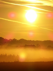 Misty Sunrise (The-Beauty-Of-Nature) Tags: autumn fall herbst cozy october nature morning morgen sunrise sonnenaufgang fog nebel mist light licht early früh sun sonne sunny sonnig fields feld
