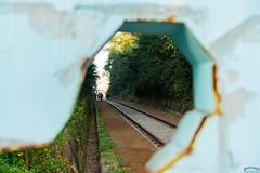Through the face (Tachial) Tags: fe carlzeiss lce7rm3 sony fullframe railway sel55f18z a7r3 55mm 구로구 서울특별시 대한민국 kr