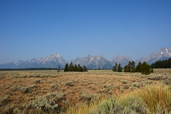 Teaton 0513 (mart.panzer) Tags: teaton yellowstone us usa nationalpark nature scenic top highlights attractions must see awesome best bestof landscape elk bison teton grandteton bear