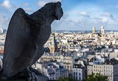 Gargoyle over Paris / Гаргулии над Парижем (dmilokt) Tags: город city town памятник монумент скульптура sculpture dmilokt nikon d750 paris париж
