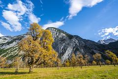 Clouds and more (*Capture the Moment*) Tags: 2018 austria autumn eng fotowalk grosserahornboden herbst october oktober sonya7miii sonya7m3 sonya7iii sonyfe1635mmf4zaoss sonyilce7m3 österreich
