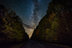 Forest Way (free3yourmind) Tags: forest milky way nature trees road path dark sky stars starry night belarus beauty