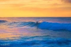 The Twilight Surfer (buffdawgus) Tags: turtlebay landscape sunset pacificocean surfer lightroom6 topazstudio seascape hawaii canonef24105mmf4lisusm oahu