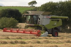 Claas Lexion 670 Terra Trac Combine Harvester cutting Spring Barley (Shane Casey CK25) Tags: claas lexion 670 terra trac combine harvester cutting spring barley midleton grain harvest grain2018 grain18 harvest2018 harvest18 corn2018 corn crop tillage crops cereal cereals golden straw dust chaff county cork ireland irish farm farmer farming agri agriculture contractor field ground soil earth work working horse power horsepower hp pull pulling cut knife blade blades machine machinery collect collecting mähdrescher cosechadora moissonneusebatteuse kombajny zbożowe kombajn maaidorser mietitrebbia nikon d7200