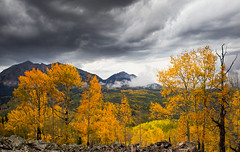 Amazing Fall (valentina425) Tags: colorado rocky mountains landscapes fall autumn aspen pass colorful hiking tree forest wood grass landscape field mountain