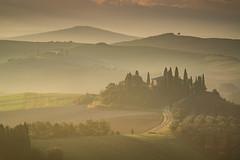 Tuscany (Jeremy Duguid) Tags: tuscany travel nature landscape tuscan italy rome sunrise morning dawn beauty sony jeremy duguid trees hills mediterranean europe european wine outdoors