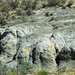Big Blue Bentonite (Sentinel Butte Formation, Upper Paleocene; Coal Vein Trail, Roosevelt National Park, Little Missouri Badlands, North Dakota, USA) 2