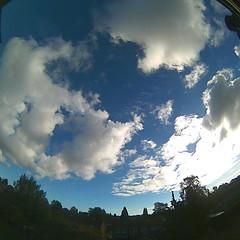 Bloomsky Enschede (October 22, 2018 at 11:06AM) (mybloomsky) Tags: bloomsky weather weer enschede netherlands the nederland weatherstation station camera live livecam cam webcam mybloomsky