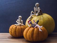 It's that time of the year, Happy Halloween [43/52] (Jam-Gloom) Tags: olympusuk olympusomdem5 olympusomd olympusem5 olympus omdem5 omd em5 pumpkin pumpkins rement rementposeskeleton rementskeleton skeleton poseskeleton gourds gourd autumn halloween hallows project522018 project52 52weeks 52weekproject 52 weeks week project 2018 4352 60mm28 60mmmacro 60mmmacro28 macro 60mm
